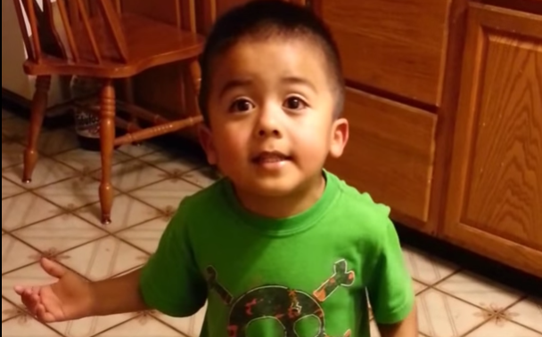 Viral Video: 3-year-old makes strong case for cupcakes